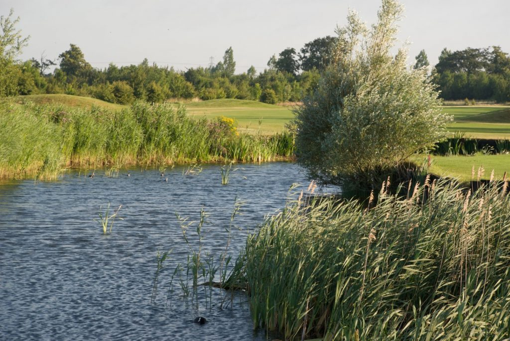 Thorney Lakes Cambridgeshire